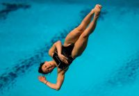 Diving Cup